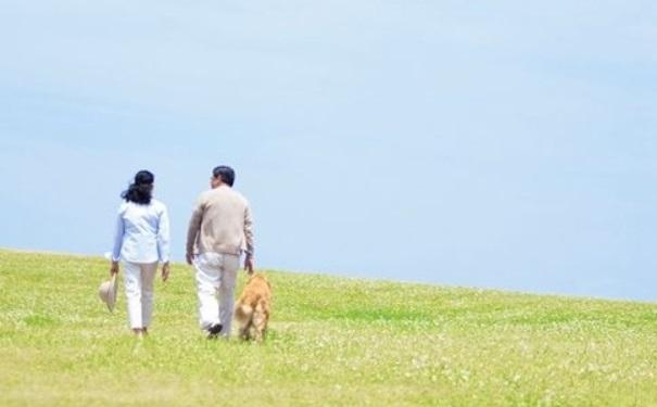 老人散步好吗?老人散步有哪些