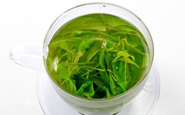 喝苦丁茶可以减肥吗?苦丁茶有哪些功效作用?[图]