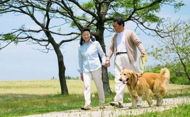 哪些有氧运动有助于老年人养生?老年人运动要注意哪些