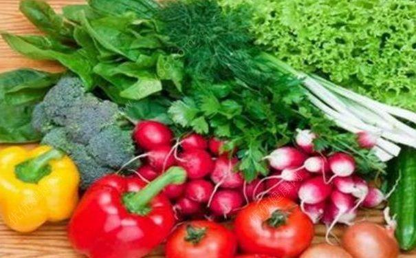 夏天有什么适合老人吃的食物?夏天什么食物适合老人吃?(4)