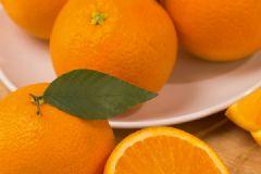 橙子百科全说